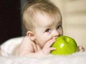 Яблоко грудничкам