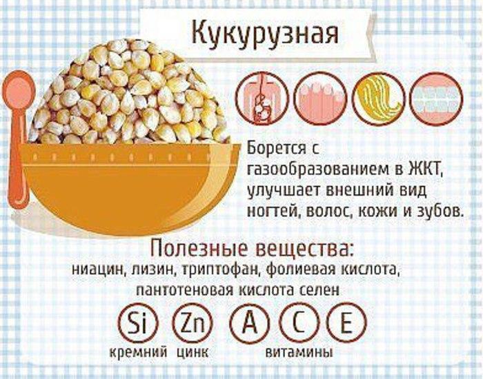 Польза кукурузной каши для организма